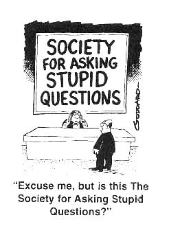 stupid question.jpg